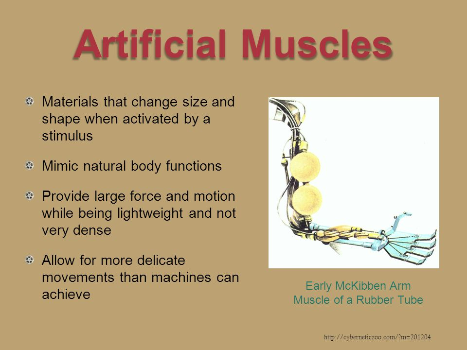 Artificial Muscles Materials that change size and shape when activated by a stimulus Mimic natural body functions Provide large force and motion while being lightweight and not very dense Allow for more delicate movements than machines can achieve http://cyberneticzoo.com/ m=201204 Early McKibben Arm Muscle of a Rubber Tube