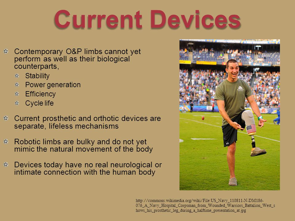 Current Devices Contemporary O&P limbs cannot yet perform as well as their biological counterparts, Stability Power generation Efficiency Cycle life Current prosthetic and orthotic devices are separate, lifeless mechanisms Robotic limbs are bulky and do not yet mimic the natural movement of the body Devices today have no real neurological or intimate connection with the human body http://commons.wikimedia.org/wiki/File:US_Navy_110811-N-DM186- 076_A_Navy_Hospital_Corpsman_from_Wounded_Warriors_Battalion_West_s hows_his_prosthetic_leg_during_a_halftime_presentation_at.jpg