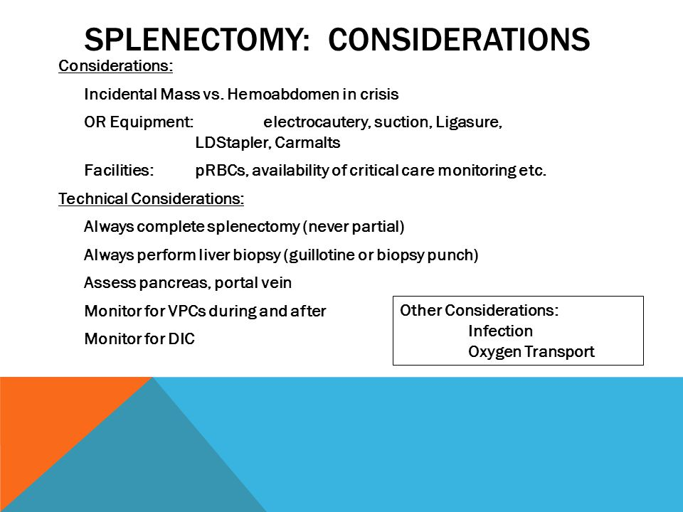 SPLENECTOMY: CONSIDERATIONS Considerations: Incidental Mass vs. Hemoabdomen in crisis OR Equipment: electrocautery, suction, Ligasure, LDStapler, Carm