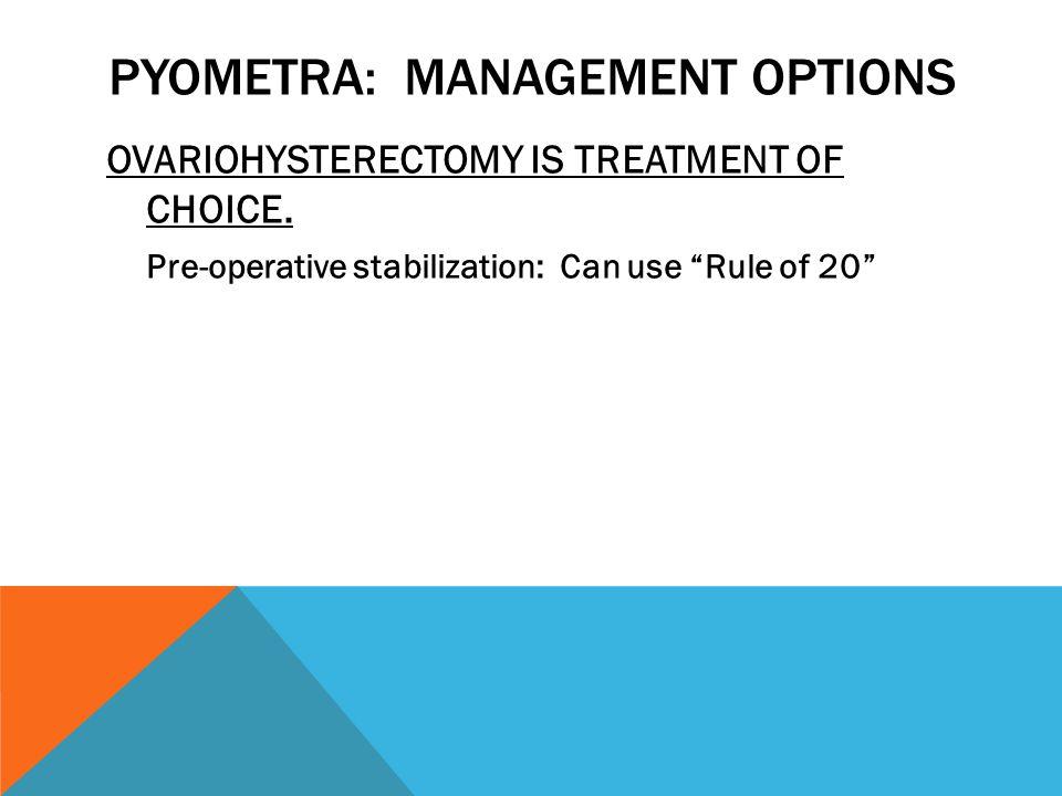 PYOMETRA: MANAGEMENT OPTIONS OVARIOHYSTERECTOMY IS TREATMENT OF CHOICE.