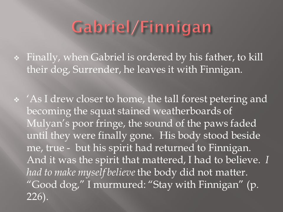  Finally, when Gabriel is ordered by his father, to kill their dog, Surrender, he leaves it with Finnigan.  'As I drew closer to home, the tall fore