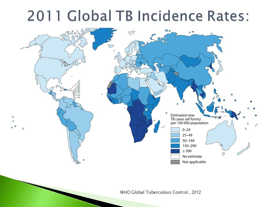  TB is the most common OI in HIV+ patients ◦ Occurs at any CD4 count ◦ One-third of HIV+ patients also have LTBI  TB is the most common cause of death in HIV/AIDS patients in Africa and a leading cause globally ◦ 350,000 deaths yearly worldwide  All patients with TB should be tested for HIV; all patients with HIV should be screened for TB