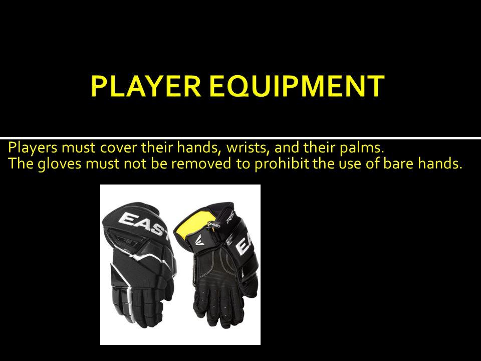  Goalie stick  Goalie glove (catching and blocking glove)  Goalie skates  Helmet with full face mask  Leg guards