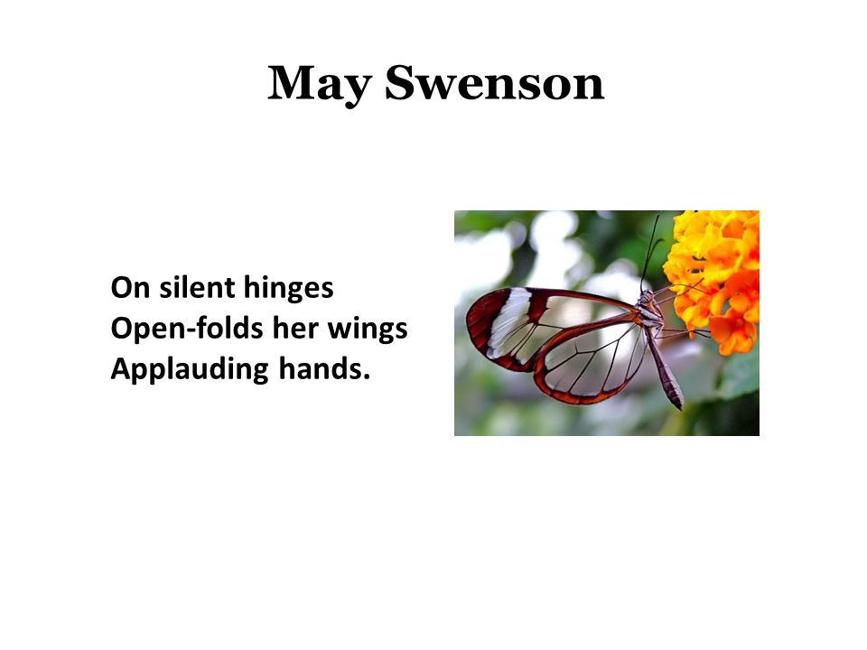 May Swenson On silent hinges Open-folds her wings Applauding hands.