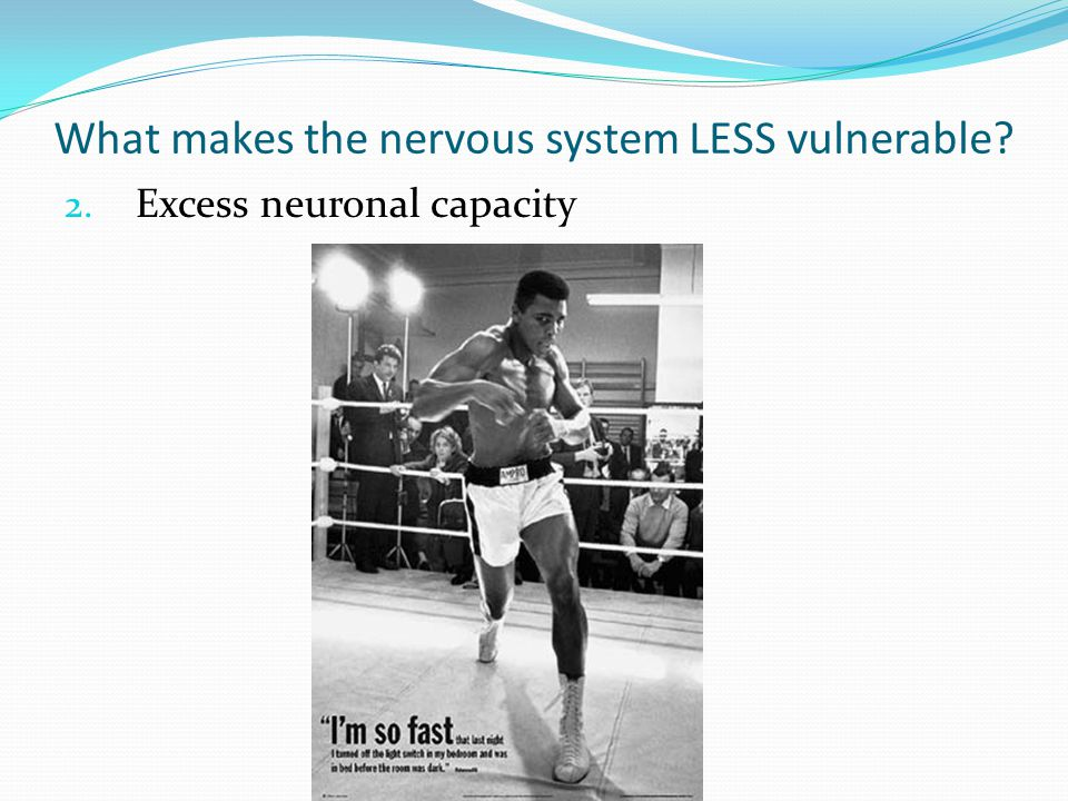 What makes the nervous system LESS vulnerable? 2. Excess neuronal capacity