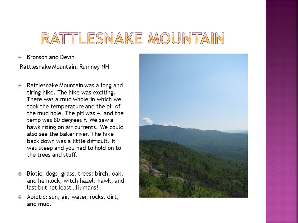  Bronson and Devin Rattlesnake Mountain, Rumney NH  Rattlesnake Mountain was a long and tiring hike. The hike was exciting. There was a mud whole in