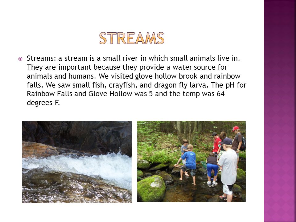  Streams: a stream is a small river in which small animals live in. They are important because they provide a water source for animals and humans. We