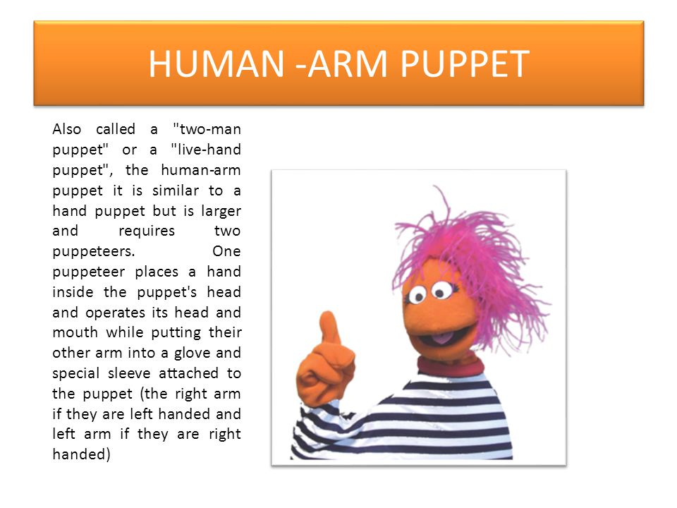 HUMAN -ARM PUPPET Also called a two-man puppet or a live-hand puppet , the human-arm puppet it is similar to a hand puppet but is larger and requires two puppeteers.