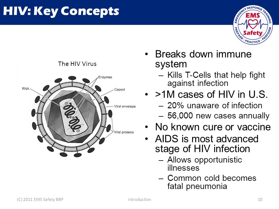 HIV: Key Concepts Breaks down immune system – Kills T-Cells that help fight against infection >1M cases of HIV in U.S.