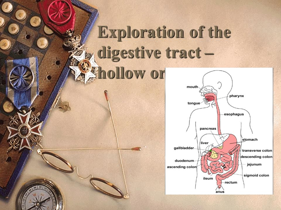 Exploration of the digestive tract – hollow organs