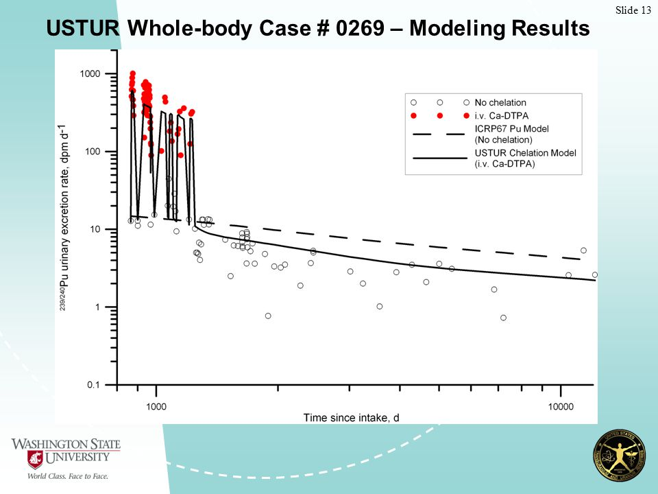 Slide 13 USTUR Whole-body Case # 0269 – Modeling Results