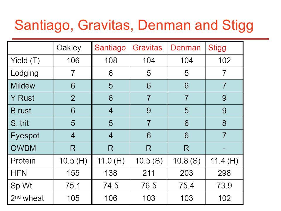 Santiago, Gravitas, Denman and Stigg OakleySantiagoGravitasDenmanStigg Yield (T)106108104 102 Lodging76557 Mildew65667 Y Rust26779 B rust64959 S.