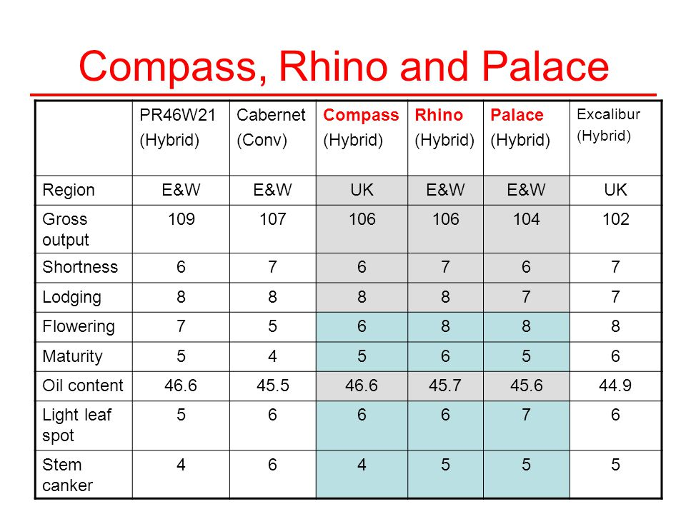 Compass, Rhino and Palace PR46W21 (Hybrid) Cabernet (Conv) Compass (Hybrid) Rhino (Hybrid) Palace (Hybrid) Excalibur (Hybrid) RegionE&W UKE&W UK Gross output 109107106 104102 Shortness676767 Lodging888877 Flowering756888 Maturity545656 Oil content46.645.546.645.745.644.9 Light leaf spot 566676 Stem canker 464555