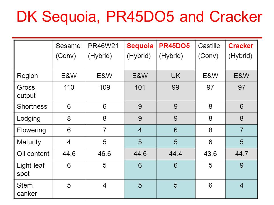 DK Sequoia, PR45DO5 and Cracker Sesame (Conv) PR46W21 (Hybrid) Sequoia (Hybrid) PR45DO5 (Hybrid) Castille (Conv) Cracker (Hybrid) RegionE&W UKE&W Gros