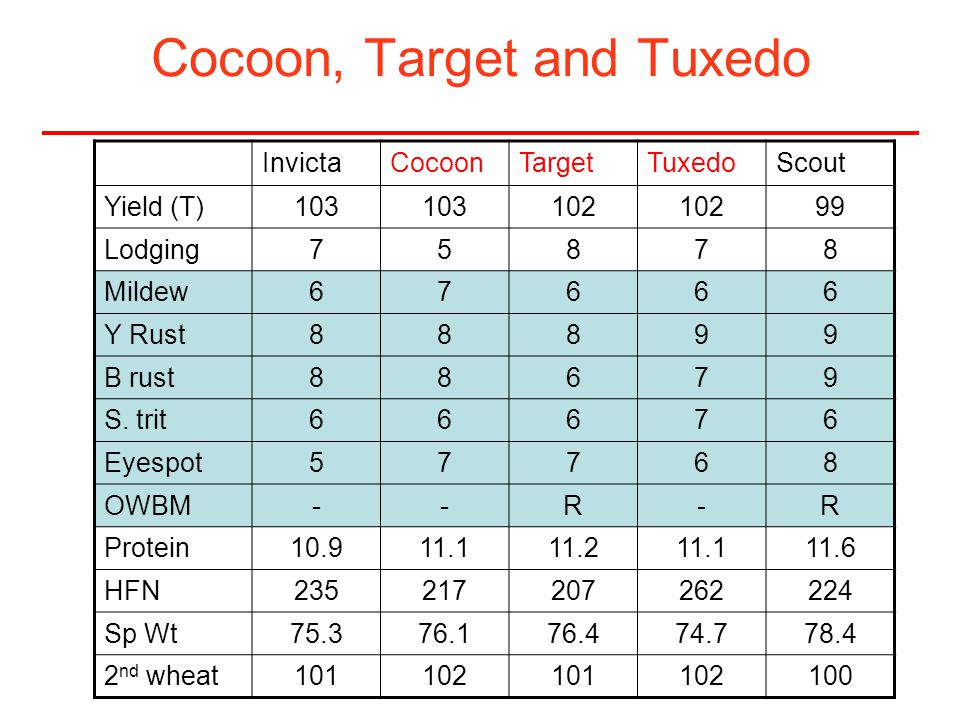Cocoon, Target and Tuxedo InvictaCocoonTargetTuxedoScout Yield (T)103 102 99 Lodging75878 Mildew67666 Y Rust88899 B rust88679 S. trit66676 Eyespot5776