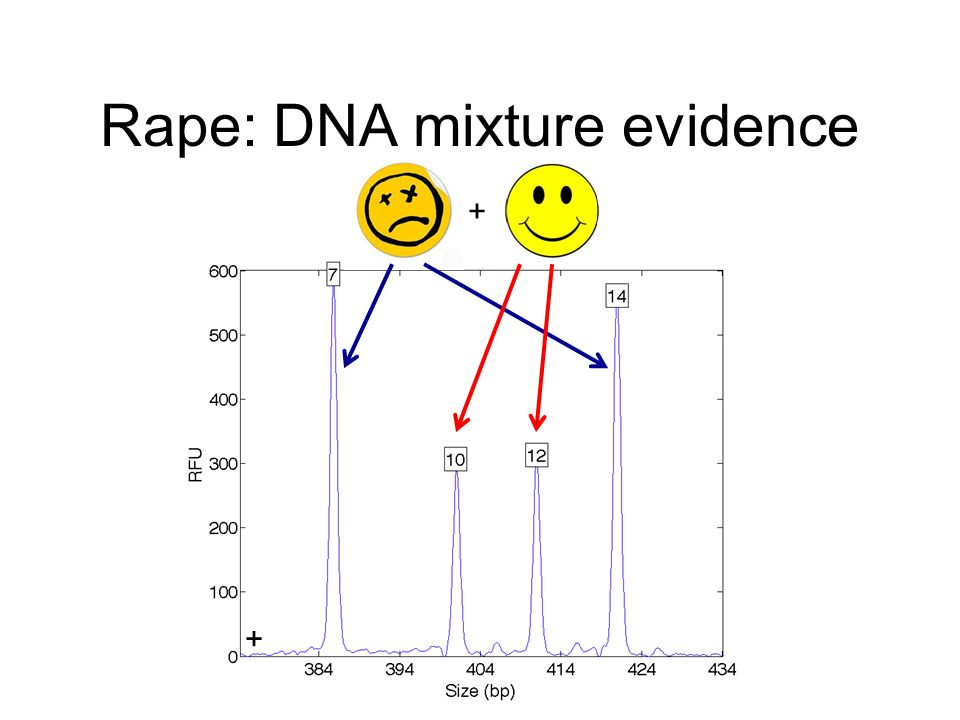 Rape: DNA mixture evidence + +