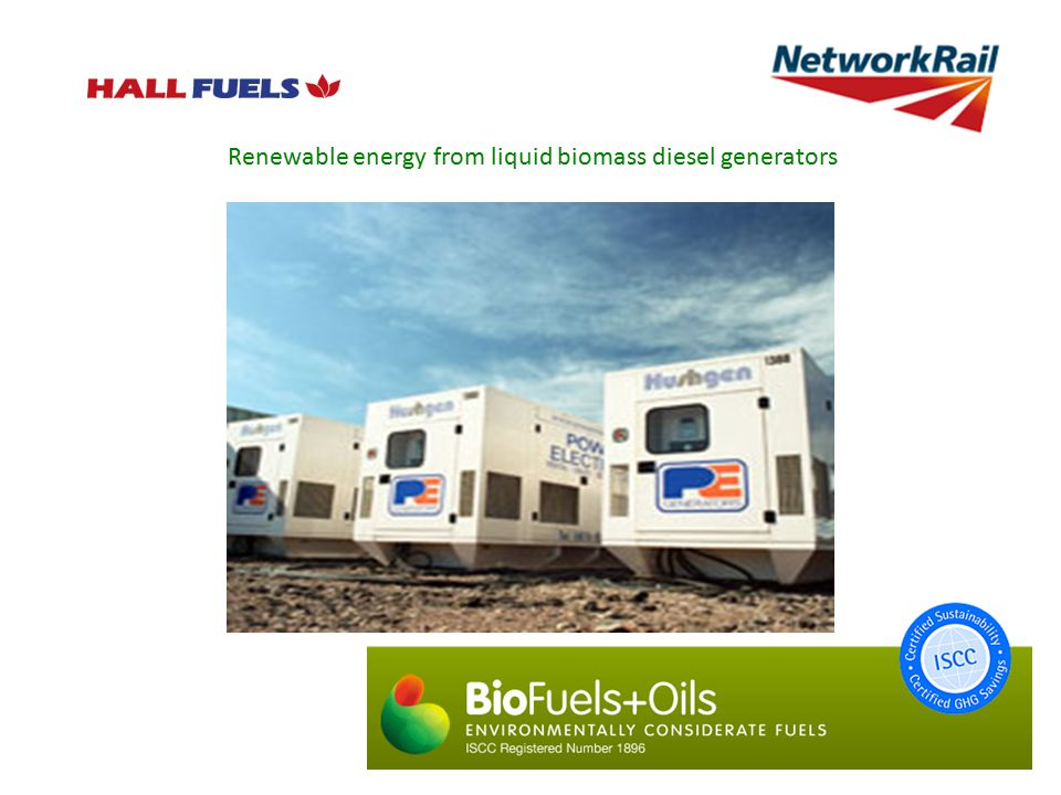 Renewable energy from liquid biomass diesel generators
