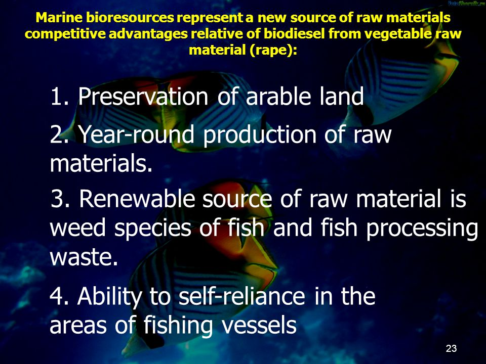 Marine bioresources represent a new source of raw materials competitive advantages relative of biodiesel from vegetable raw material (rape): 23 1. Pre