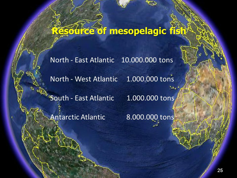 25 Resource of mesopelagic fish North - East Atlantic 10.000.000 tons North - West Atlantic 1.000.000 tons South - East Atlantic 1.000.000 tons Antarc