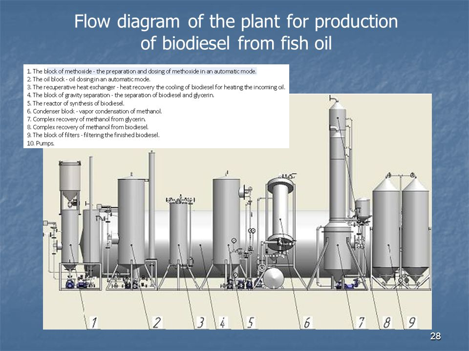 28 Flow diagram of the plant for production of biodiesel from fish oil