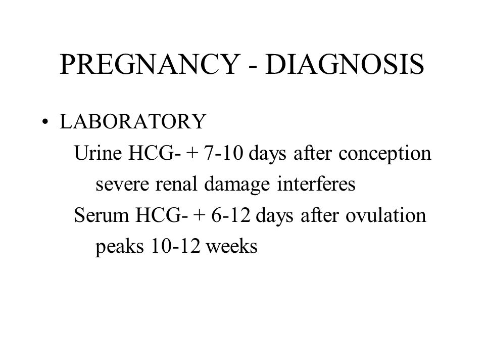 PREGNANCY - DIAGNOSIS LABORATORY Urine HCG- + 7-10 days after conception severe renal damage interferes Serum HCG- + 6-12 days after ovulation peaks 10-12 weeks