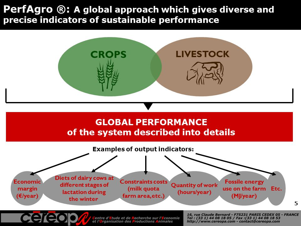 5 GLOBAL PERFORMANCE of the system described into details LIVESTOCK CROPS PerfAgro ®: A global approach which gives diverse and precise indicators of sustainable performance Economic margin (€/year) Diets of dairy cows at different stages of lactation during the winter Quantity of work (hours/year) Fossile energy use on the farm (MJ/year) Constraints costs (milk quota farm area, etc.) Examples of output indicators: Etc.