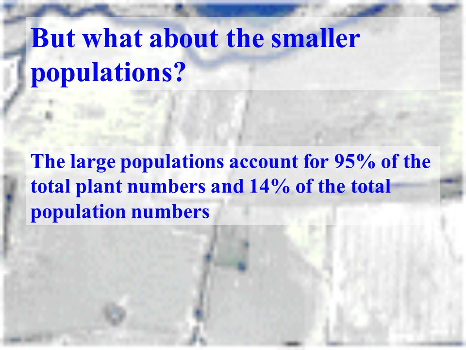 But what about the smaller populations? The large populations account for 95% of the total plant numbers and 14% of the total population numbers
