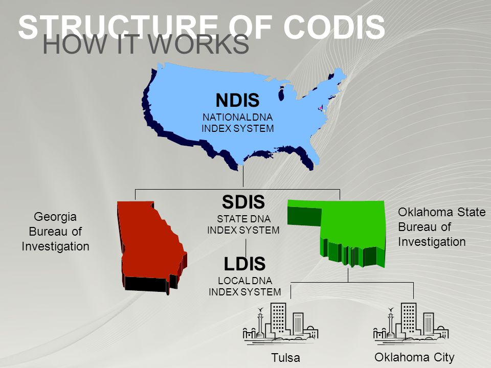STRUCTURE OF CODIS SDIS STATE DNA INDEX SYSTEM Georgia Bureau of Investigation Oklahoma State Bureau of Investigation Tulsa LDIS LOCAL DNA INDEX SYSTEM Oklahoma City NDIS NATIONAL DNA INDEX SYSTEM HOW IT WORKS