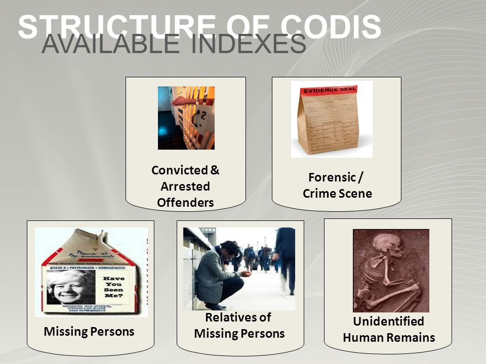 Missing Persons Convicted & Arrested Offenders Unidentified Human Remains Relatives of Missing Persons Forensic / Crime Scene STRUCTURE OF CODIS AVAILABLE INDEXES