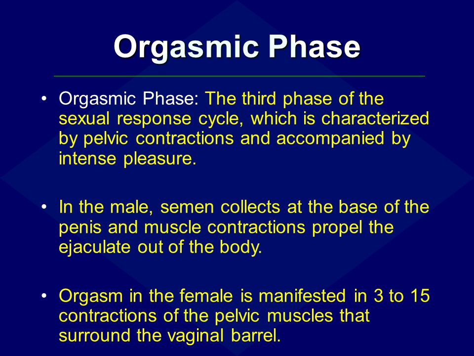 Orgasmic Phase Orgasmic Phase: The third phase of the sexual response cycle, which is characterized by pelvic contractions and accompanied by intense