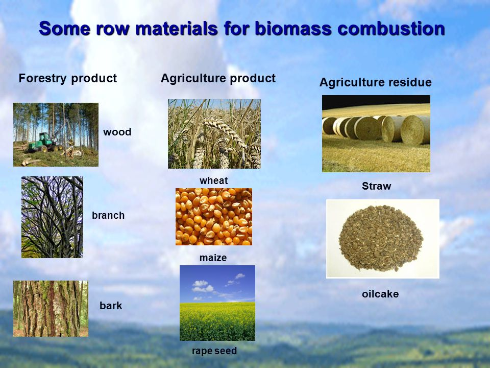 Some row materials for biomass combustion Forestry productAgriculture product Agriculture residue wood Straw branch bark oilcake wheat maize rape seed