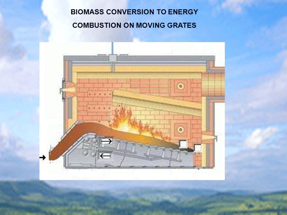 BIOMASS CONVERSION TO ENERGY COMBUSTION ON MOVING GRATES