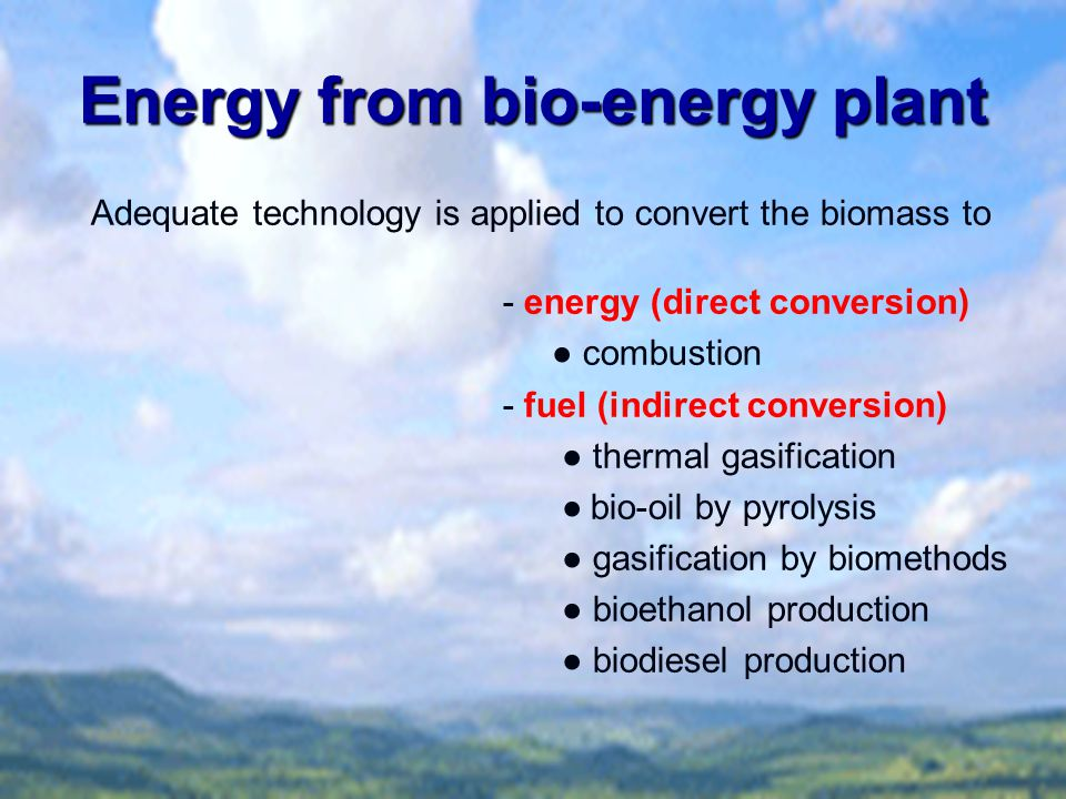 Energy from bio-energy plant Adequate technology is applied to convert the biomass to - energy (direct conversion) ● combustion - fuel (indirect conve