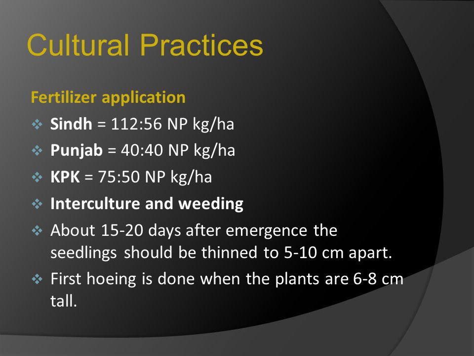 Cultural Practices Fertilizer application SSindh = 112:56 NP kg/ha PPunjab = 40:40 NP kg/ha KKPK = 75:50 NP kg/ha IInterculture and weeding A