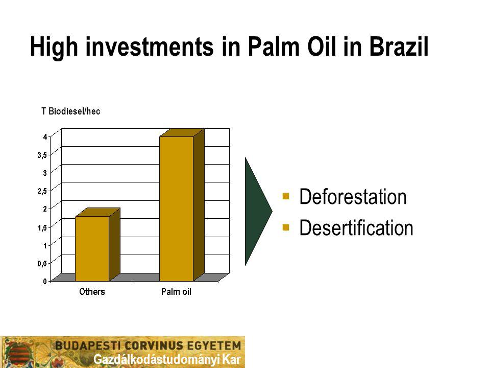 Gazdálkodástudományi Kar High investments in Palm Oil in Brazil T Biodiesel/hec  Deforestation  Desertification
