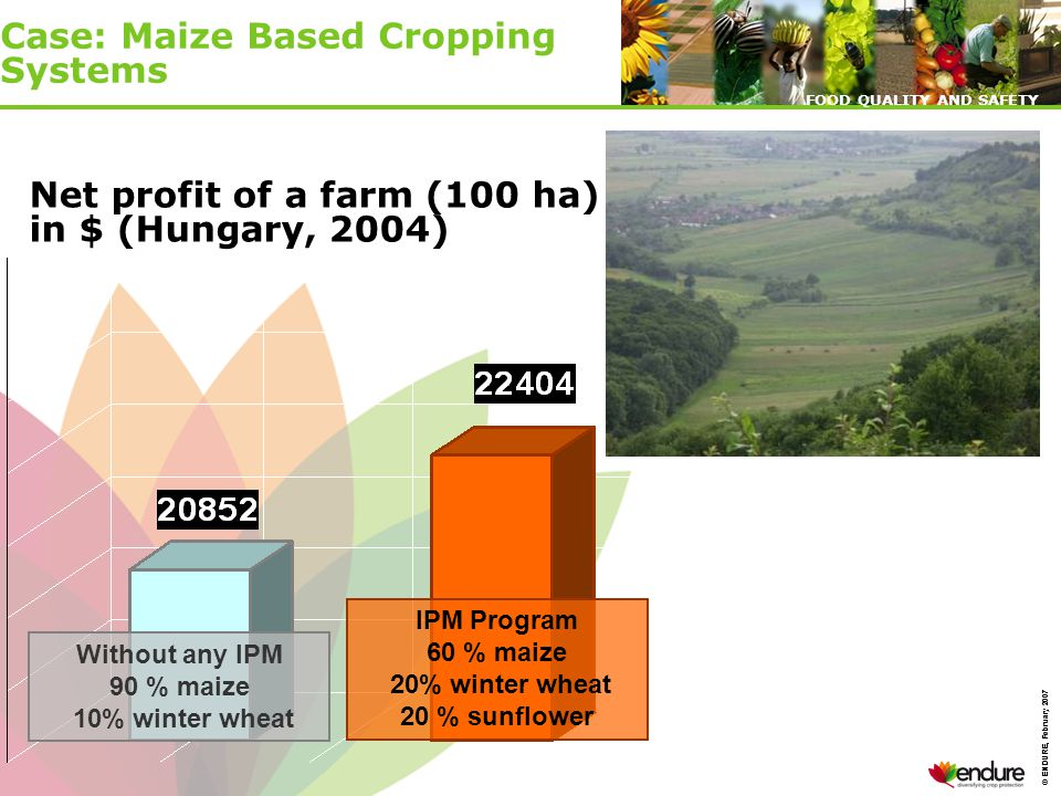 © ENDURE, February 2007 FOOD QUALITY AND SAFETY © ENDURE, February 2007 FOOD QUALITY AND SAFETY Without any IPM 90 % maize 10% winter wheat IPM Program 60 % maize 20% winter wheat 20 % sunflower Net profit of a farm (100 ha) in $ (Hungary, 2004) Case: Maize Based Cropping Systems