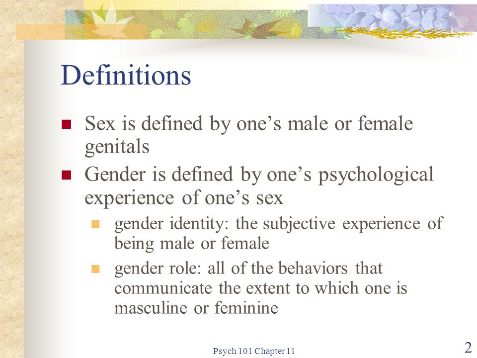 Psych 101 Chapter 11 13 Sexual Anatomy
