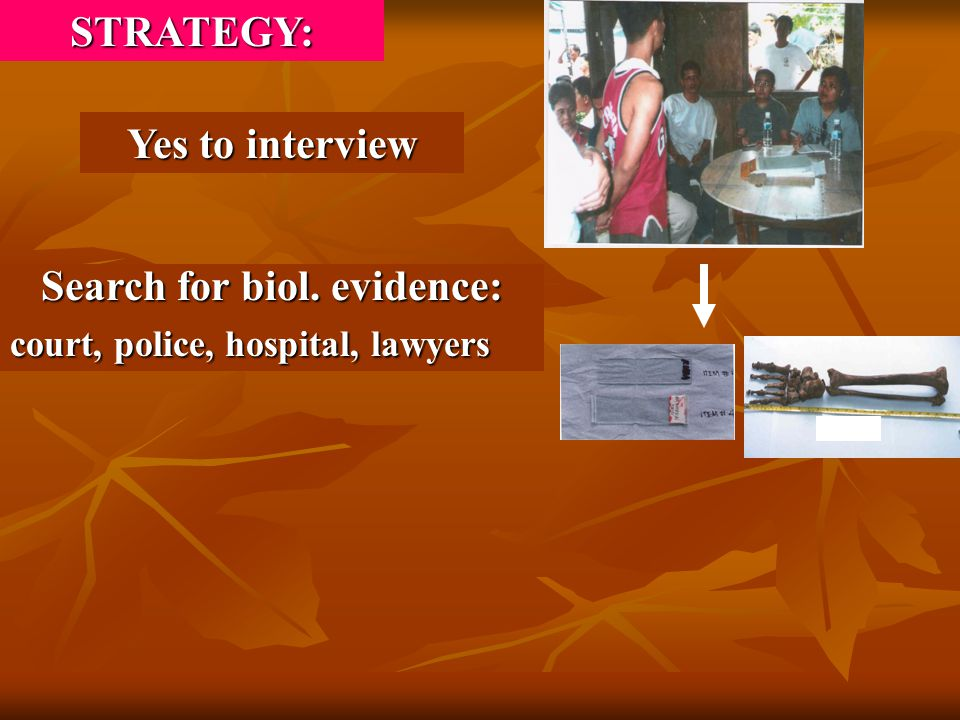 Yes to interview Search for biol. evidence: court, police, hospital, lawyers STRATEGY: