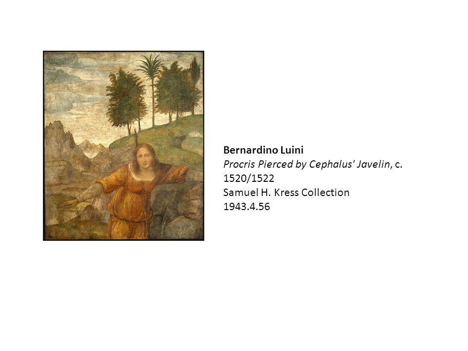 Bernardino Luini Procris Pierced by Cephalus' Javelin, c. 1520/1522 Samuel H. Kress Collection 1943.4.56