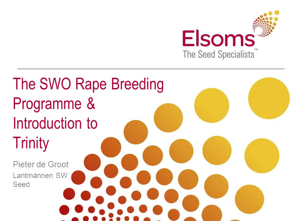 The SWO Rape Breeding Programme & Introduction to Trinity Pieter de Groot Lantmännen SW Seed