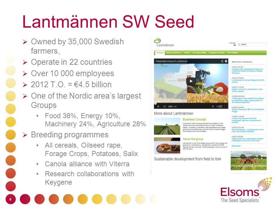 Elsoms Seeds  Leading independent UK plant breeder  Family owned  75 employees  T.O.2010 €24 million  Breeding programmes Wheat Oilseeds Vegetables  UK Market Sales & Marketing specialist  Strong partnerships with major breeders 5