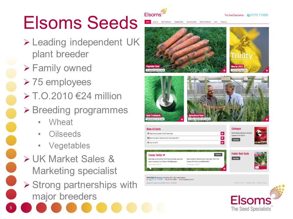 Elsoms Seeds  Leading independent UK plant breeder  Family owned  75 employees  T.O.2010 €24 million  Breeding programmes Wheat Oilseeds Vegetables  UK Market Sales & Marketing specialist  Strong partnerships with major breeders 5