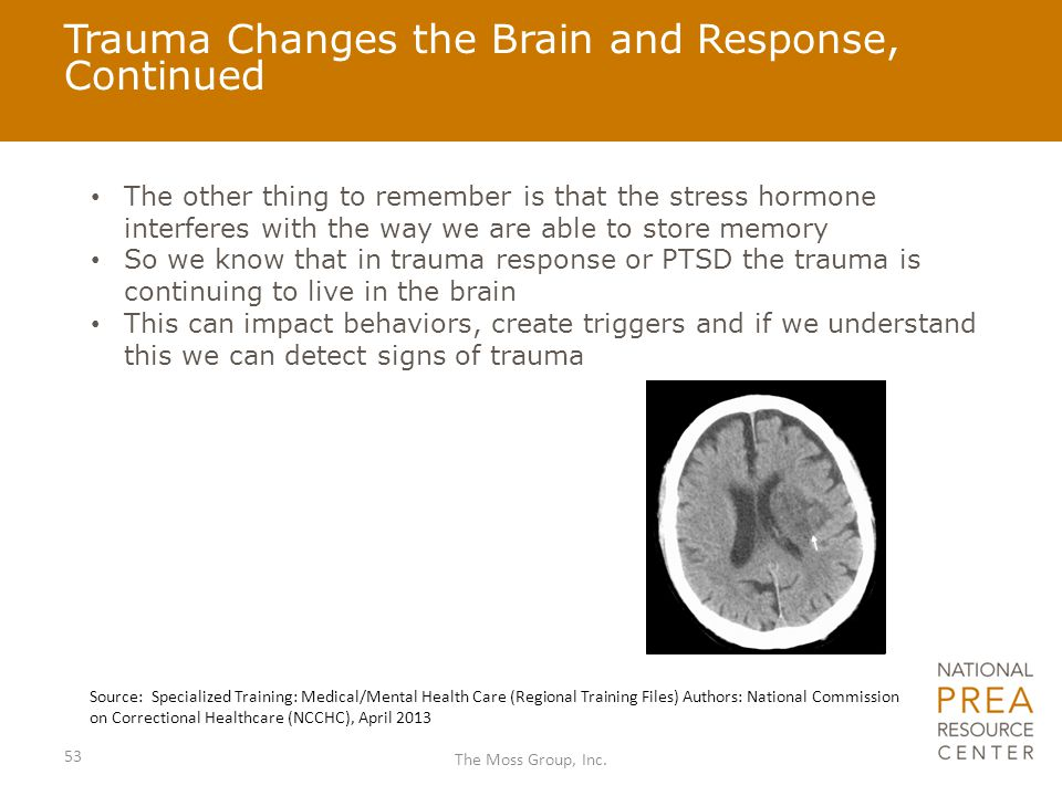 Trauma Changes the Brain and Response, Continued The other thing to remember is that the stress hormone interferes with the way we are able to store m