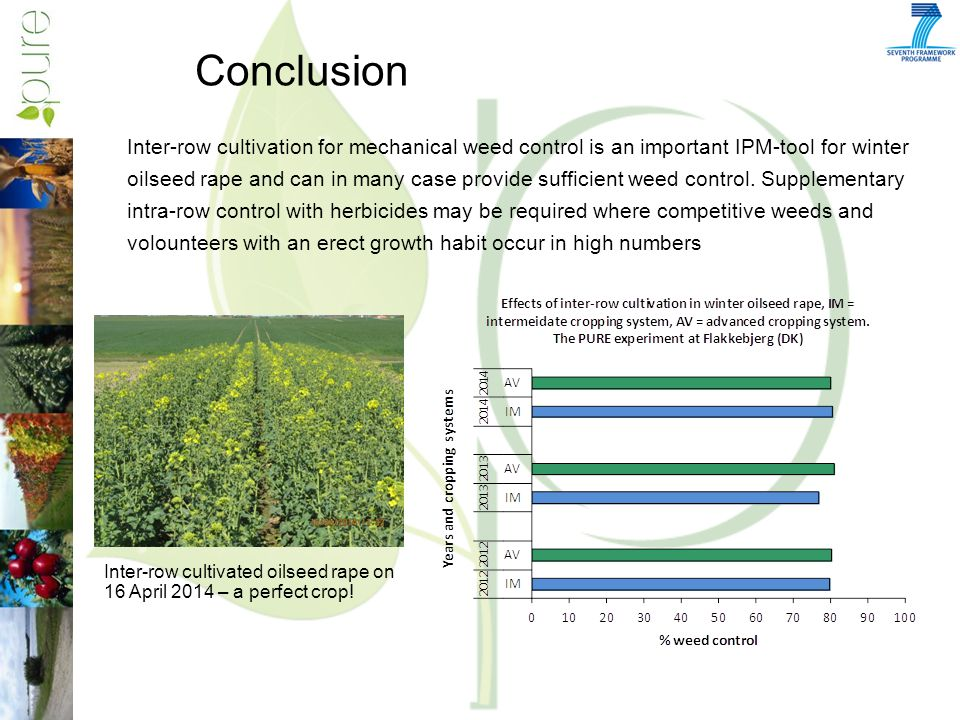 Conclusion Inter-row cultivation for mechanical weed control is an important IPM-tool for winter oilseed rape and can in many case provide sufficient weed control.