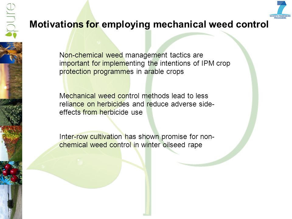 Non-chemical weed management tactics are important for implementing the intentions of IPM crop protection programmes in arable crops Mechanical weed control methods lead to less reliance on herbicides and reduce adverse side- effects from herbicide use Inter-row cultivation has shown promise for non- chemical weed control in winter oilseed rape Motivations for employing mechanical weed control