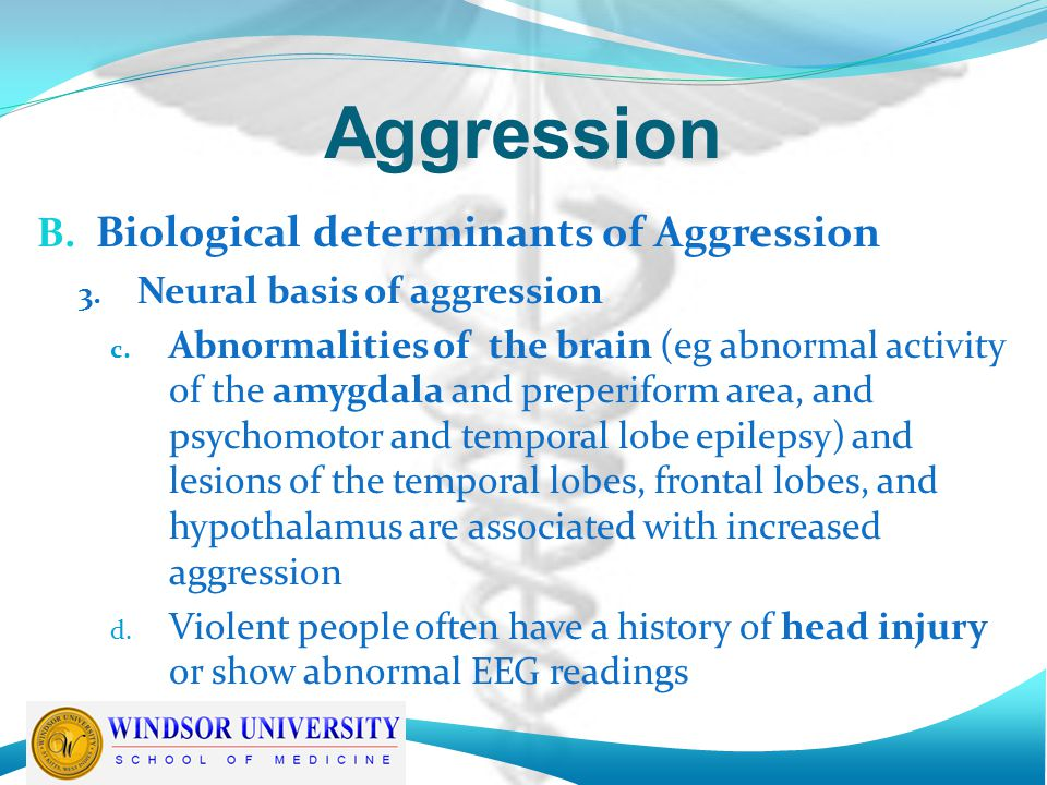 Aggression B. Biological determinants of Aggression 3.