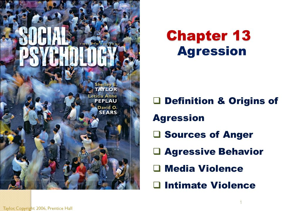 1 Chapter 13 Chapter 13 Agression Taylor, Copyright 2006, Prentice Hall  Definition & Origins of Agression  Sources of Anger  Agressive Behavior  Media Violence  Intimate Violence