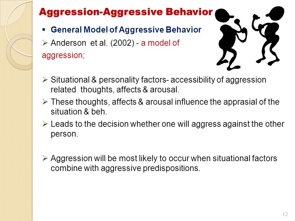 12  General Model of Aggressive Behavior  Anderson et al.