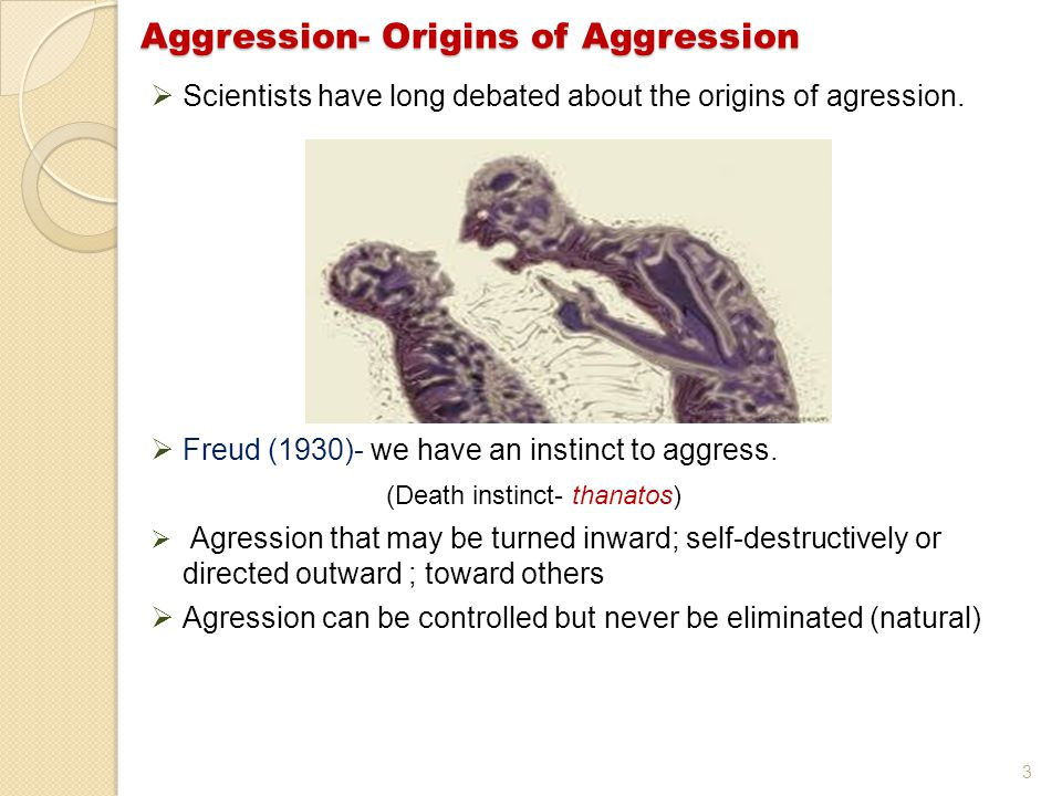 3 Aggression- Origins of Aggression  Scientists have long debated about the origins of agression.
