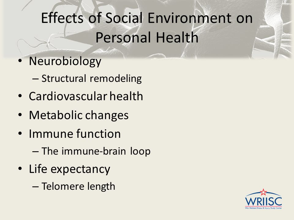 Effects of Social Environment on Personal Health Neurobiology – Structural remodeling Cardiovascular health Metabolic changes Immune function – The im